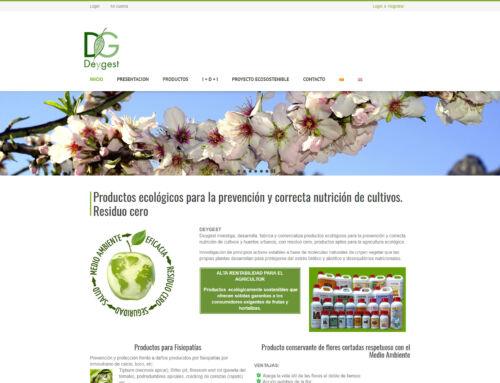 Diseño tienda online – Deygest